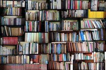 La realidad del traductor literario: luces y sombras